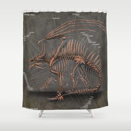 Western Dragon Skeleton Anatomy Shower Curtain