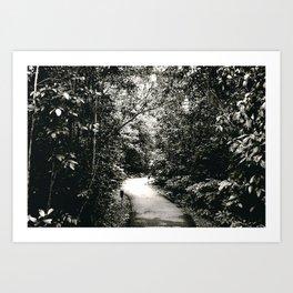 scenic route Art Print