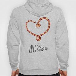 LOVESSSSssss Hoody