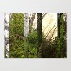 Rainforest No.10 Canvas Print