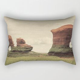 Sculpted by the Tides Rectangular Pillow