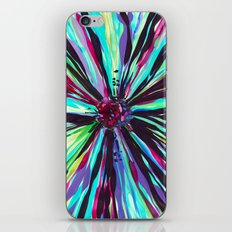 Color Burst iPhone & iPod Skin