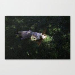 Girl sleeping Canvas Print
