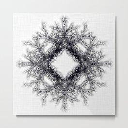 crown of thorns Metal Print