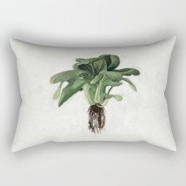 Bok Choy Oil Painting Rectangular Pillow