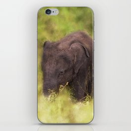Elephant Baby iPhone Skin