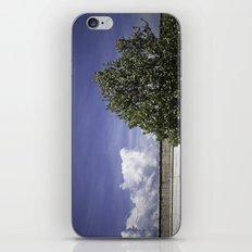 Italian Sky iPhone & iPod Skin