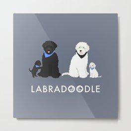Labradoodle black and white Metal Print