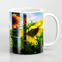 maryland Mugs featuring Sunflowers in Maryland by kpatron