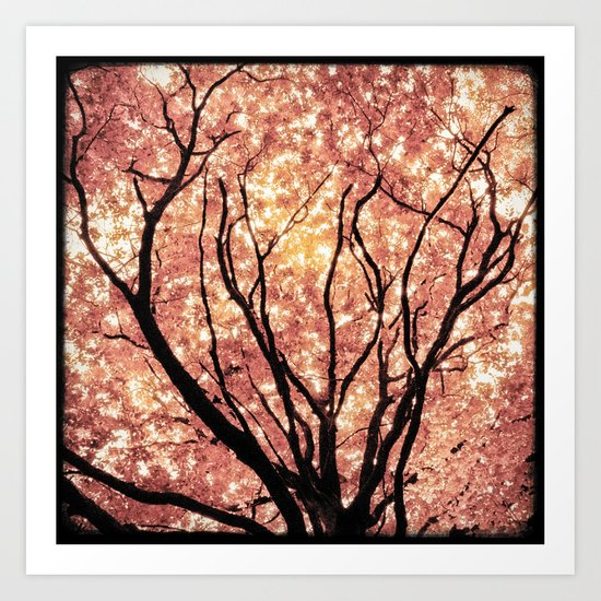 Pink Rêverie Art Print