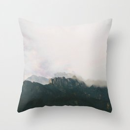 Seeing double. Throw Pillow