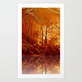 Snow Gold Woods 3.5 Art Print
