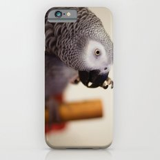 My Nose is Itchy Slim Case iPhone 6s