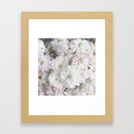 Mother's Day Mums Framed Art Print