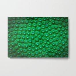 Green Curl Polyps Metal Print