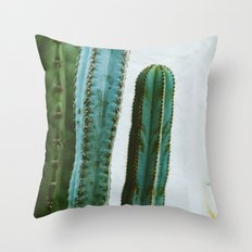 California Cactus Garden II Throw Pillow