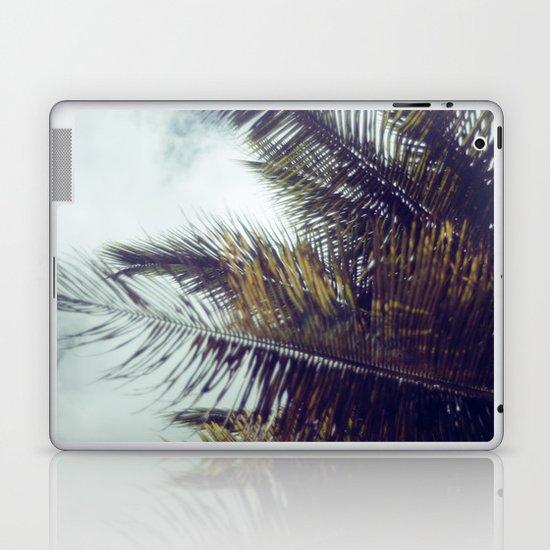 Palm Sky II Laptop & iPad Skin