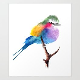 The Lilac-breasted Roller Art Print