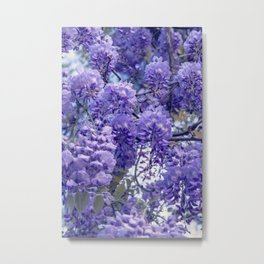 Wistful, Wishful, Ephemeral in Blue -- Spring Botanical Wisteria Vine Metal Print