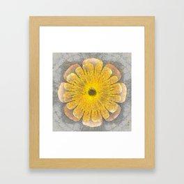 Morenosite Makeup Flowers  ID:16165-102401-08620 Framed Art Print