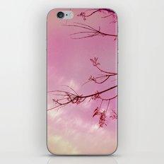 Pink Skies iPhone & iPod Skin
