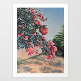 Oleander in the yard Art Print