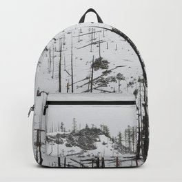 East Oregon Mountain Pass Backpack