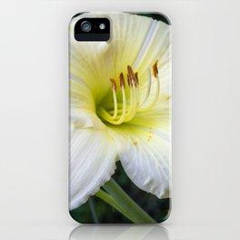 Beautiful Daylily iPhone Case