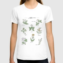 Wildflower Guide Illustration T-shirt