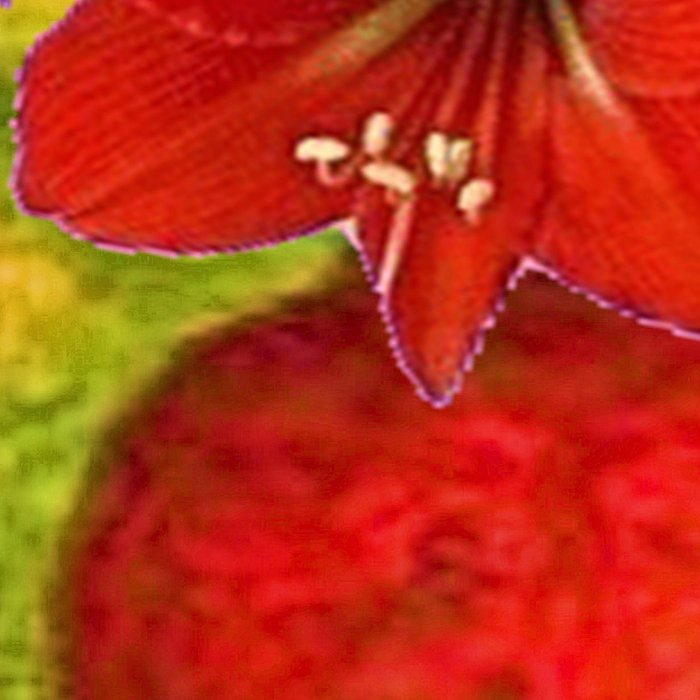 RED AMARYLLIS RED-GREEN VASE STILL LIFE Leggings