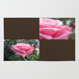 Pink Roses in Anzures 6 Blank Q3F0 Rug