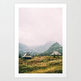 Hala Gasienicowa Autumn   Tatra Mountains Poland Art Print