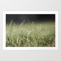 The Grass Is Always Greener Art Print