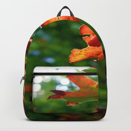Fall Leaves Backpack