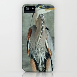 Great Blue Heron Photography Print iPhone Case