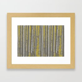 Birch in the Sun Framed Art Print