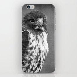 Red-tailed Hawk III BW iPhone Skin