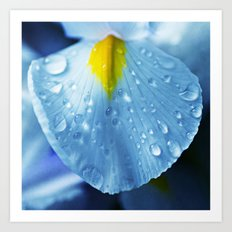 Drops and blue Art Print