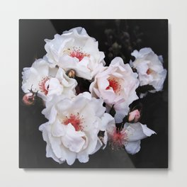 Flower (Magnificent) Metal Print