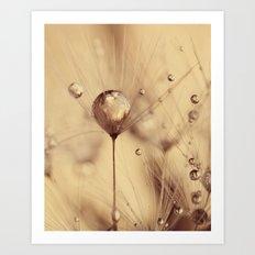 dandelion gold Art Print