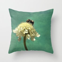 Perfect Scabiosa Throw Pillow