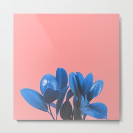 Blue Plant Pink Background Metal Print