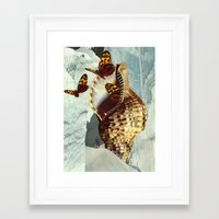 shell Framed Art Prints featuring Shell by David Delruelle