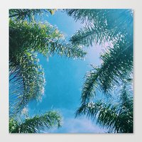 palm trees Canvas Prints featuring PALM TREES by C O R N E L L