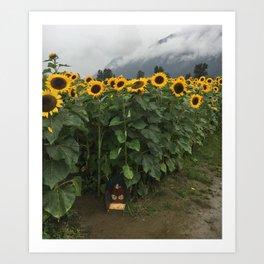 Sunflower Fairy Door Art Print