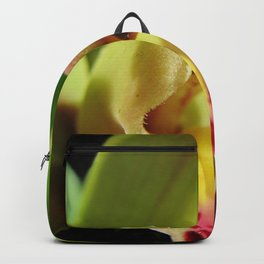 Exotic in Green Backpack