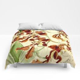 Cyrtochilum serratum Comforters