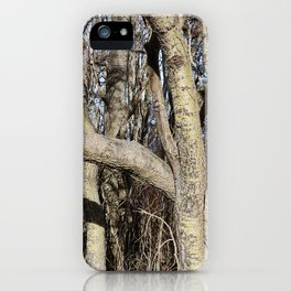 CROWDED GNARLED ASPEN TREES ON CRESCENT BEACH iPhone Case