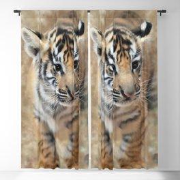 Tiger cub emerging Blackout Curtain