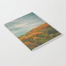 California Poppies 018 Notebook